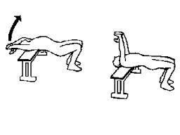 img1-blog-diadorafitness-deltoidi-posteriori