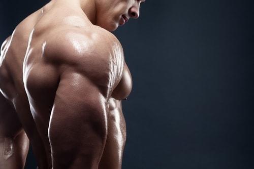 aumentare i muscoli